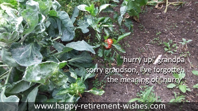 funny retirement poems
